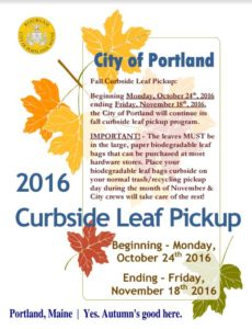 fall-leaf-collection-portland-me